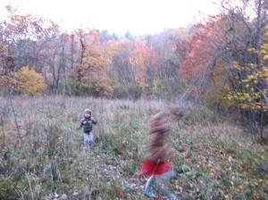 őszi réten futnak
